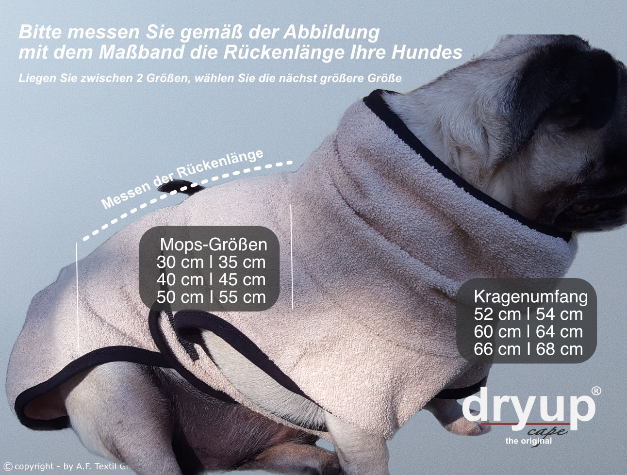 sizing-dryup-mopsZz4XaAbarag9U